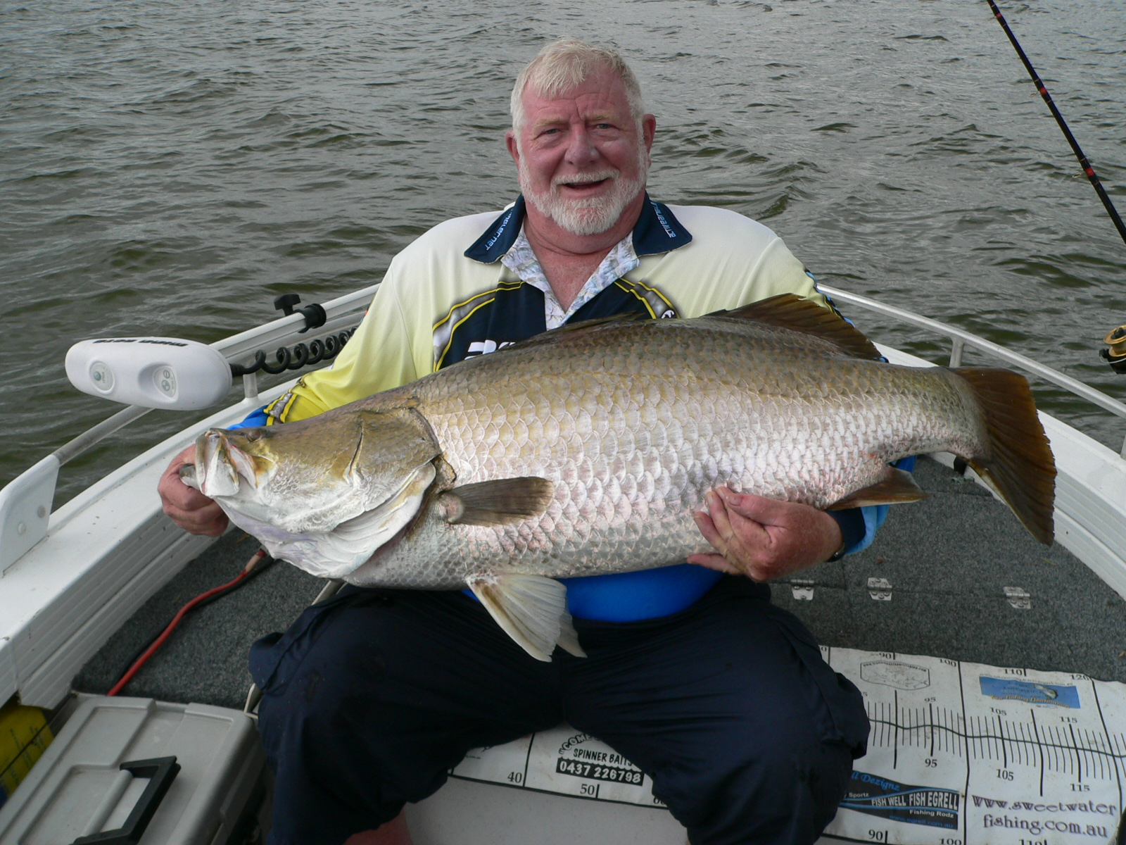 Impoundment Barramundi
