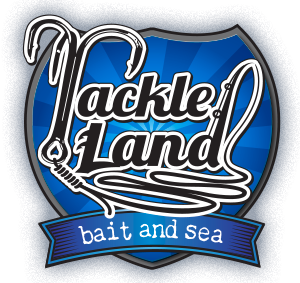 tackle land - fishing tackle and bait shop, Reel Combo