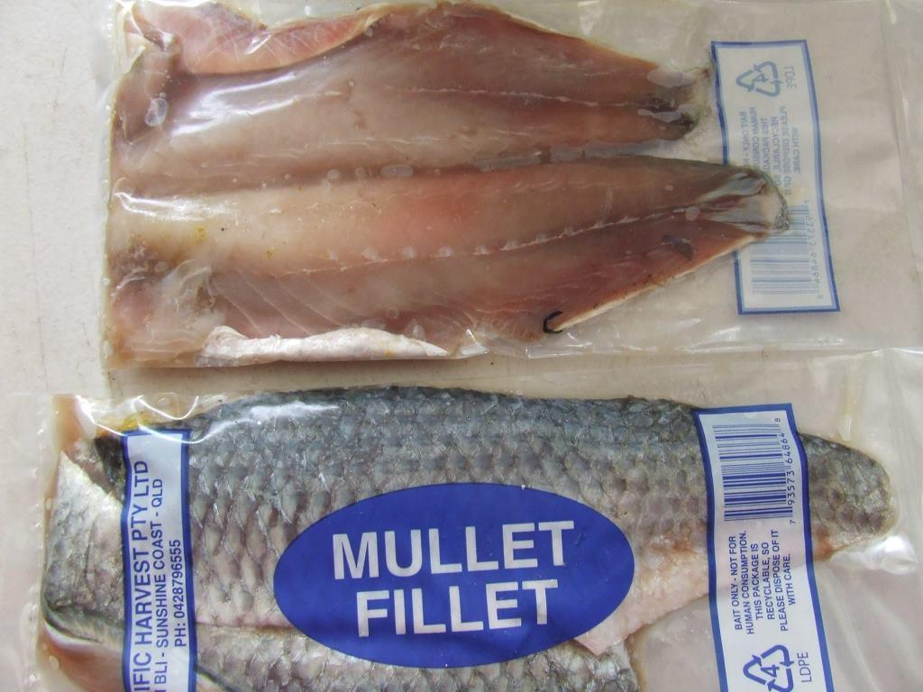 We have in stock frozen salted minnows year round - Prawn Squid Combo Prawn Squid Combo